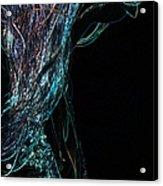 Shining Lady Acrylic Print by Jenny Rainbow