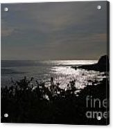 Shining Sea Acrylic Print