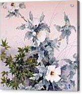 Shirasagi Acrylic Print