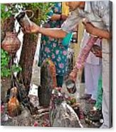 Morning Offerings At A Shiva Temple - India Acrylic Print