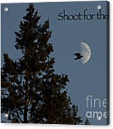 Shoot For The Moon Acrylic Print