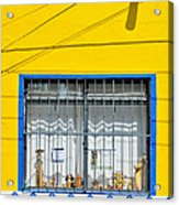 Shop Window - Mexico - Photograph By David Perry Lawrence Acrylic Print