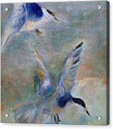 Shorebirds Acrylic Print by Susan Hanlon