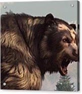 Short Faced Bear Acrylic Print by Daniel Eskridge