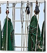 Shrimp Nets Acrylic Print