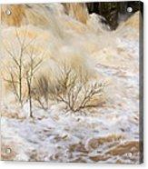 Shrubs In The Rapids #2 Acrylic Print