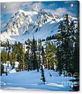 Shuksan Winter Paradise Acrylic Print by Inge Johnsson
