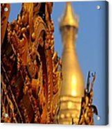 Shwe Dagon Pagoda Acrylic Print