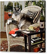 Funny Pet A Wine Bibbing Kitty  Acrylic Print