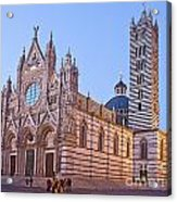 Siena Duomo At Sunset Acrylic Print by Liz Leyden