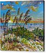 Siesta Beach Sunset Dunes Acrylic Print