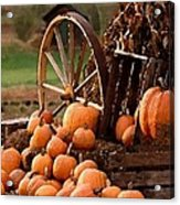 Signs Of Fall Acrylic Print