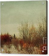 Signs Of Winter Acrylic Print