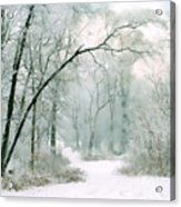 Silence Of Winter Acrylic Print
