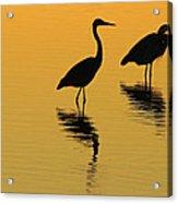 Silent Sunset Acrylic Print