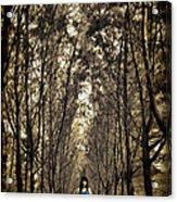 Silence Acrylic Print by Suradej Chuephanich