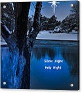 Silent Night Acrylic Print by Betty LaRue