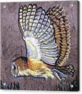 Silent Night Owl Acrylic Print by Anne Shoemaker-Magdaleno