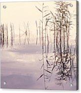 Silent Rhapsody. Sacred Music Acrylic Print
