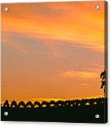 Silhouette Of Vineyard At Sunset, Paso Acrylic Print
