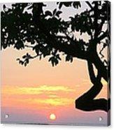 Silhouette Sunrise Acrylic Print