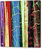Silk Fabric 01 Acrylic Print