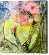 Silky Almond Flower Acrylic Print