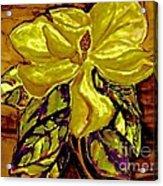 Silky Magnolia Acrylic Print by Marsha Heiken