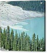 1m3531-silt Entering Peyto Lake Acrylic Print