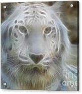 Silver-7963-fractal Acrylic Print