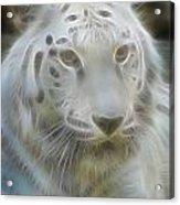 Silver-7988-fractal Acrylic Print