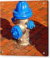 Silver And Blue Hydrant Acrylic Print