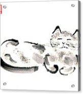 Silver Cat Acrylic Print
