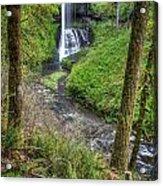 Silver Falls Oregon Acrylic Print