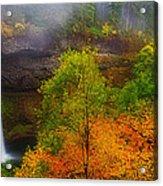 Silver Falls Pano Acrylic Print by Darren  White