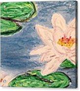 Silver Lillies Acrylic Print by Daniel Dubinsky
