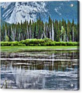 Silver Reflections Acrylic Print