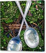 Silver Spoons  Acrylic Print