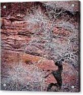 Silver Tree And Red Rocks Acrylic Print