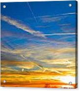 Silver Wing Sunset Acrylic Print