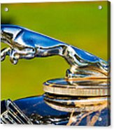 Simply Jaguar-front Emblem Acrylic Print