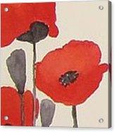 Simply Poppies 1 Acrylic Print