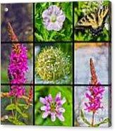 Simply Summer Wildflowers Acrylic Print