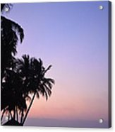 Simply Sunset Acrylic Print