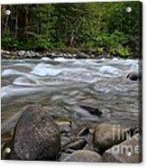 Singing Creek Acrylic Print