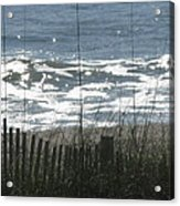 Single Dune Fence Acrylic Print