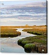 Sippewissett Marsh Acrylic Print