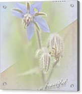Sister Birthday Greeting Card - Borage - Borage Officinalis Acrylic Print