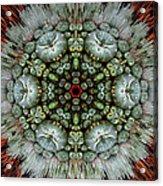 Sister Cactus Mandala Acrylic Print