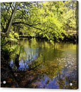 Sitting By The Creek  Acrylic Print